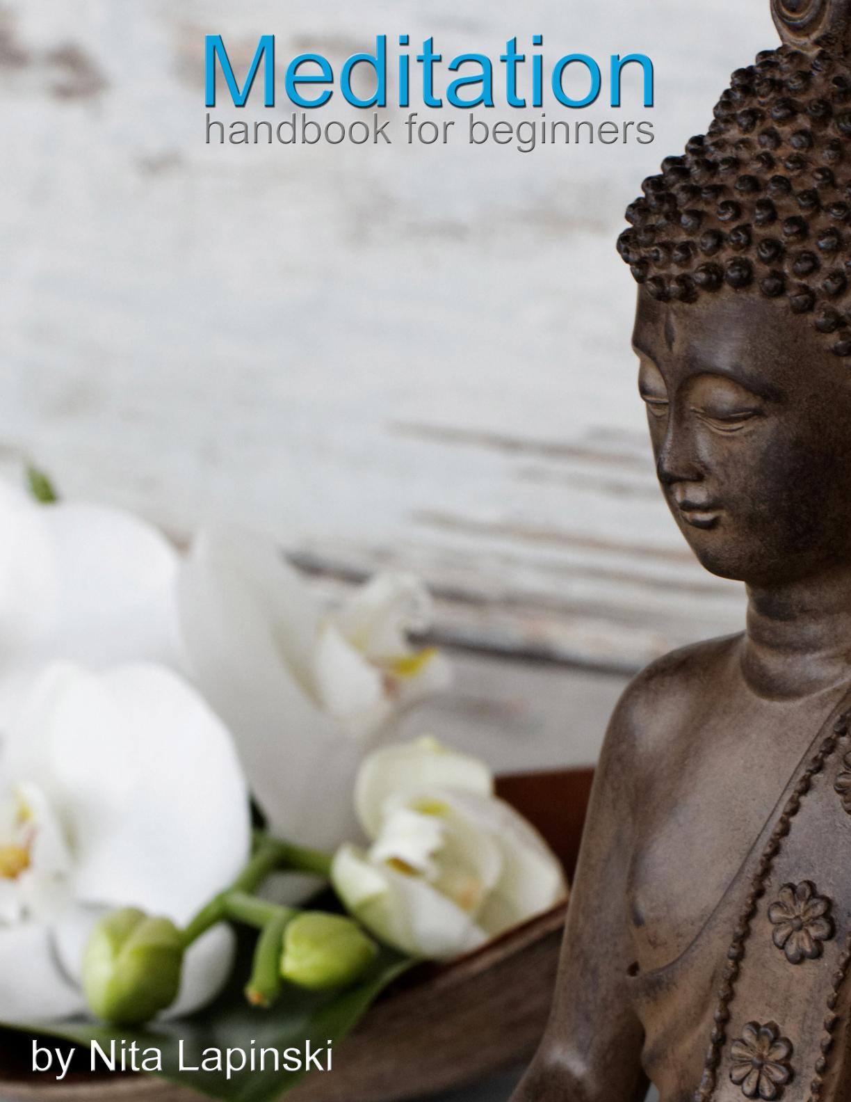 Meditation Handbook for Beginners by Nita Lapinski