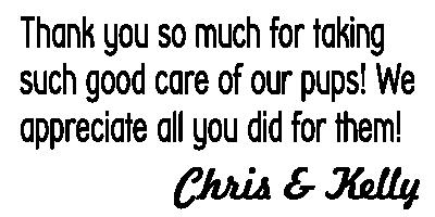 Chris_Kelly.png