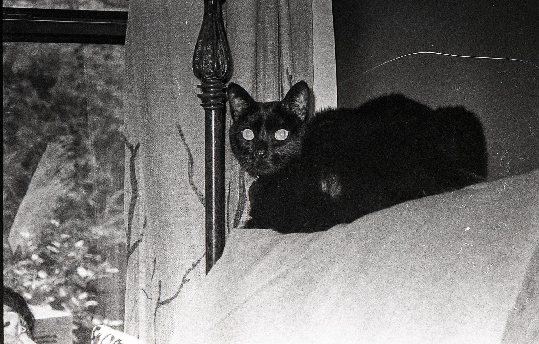 Leica00018.jpg