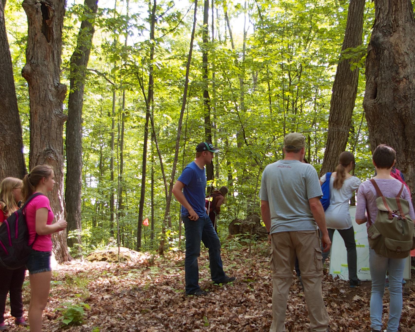 Forestry Day 2.jpg