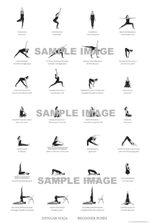 the iyengar yoga beginner pose guide — iyengar yoga source