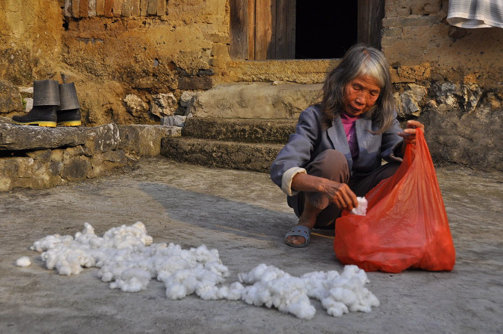 cotton lady reduced.jpg