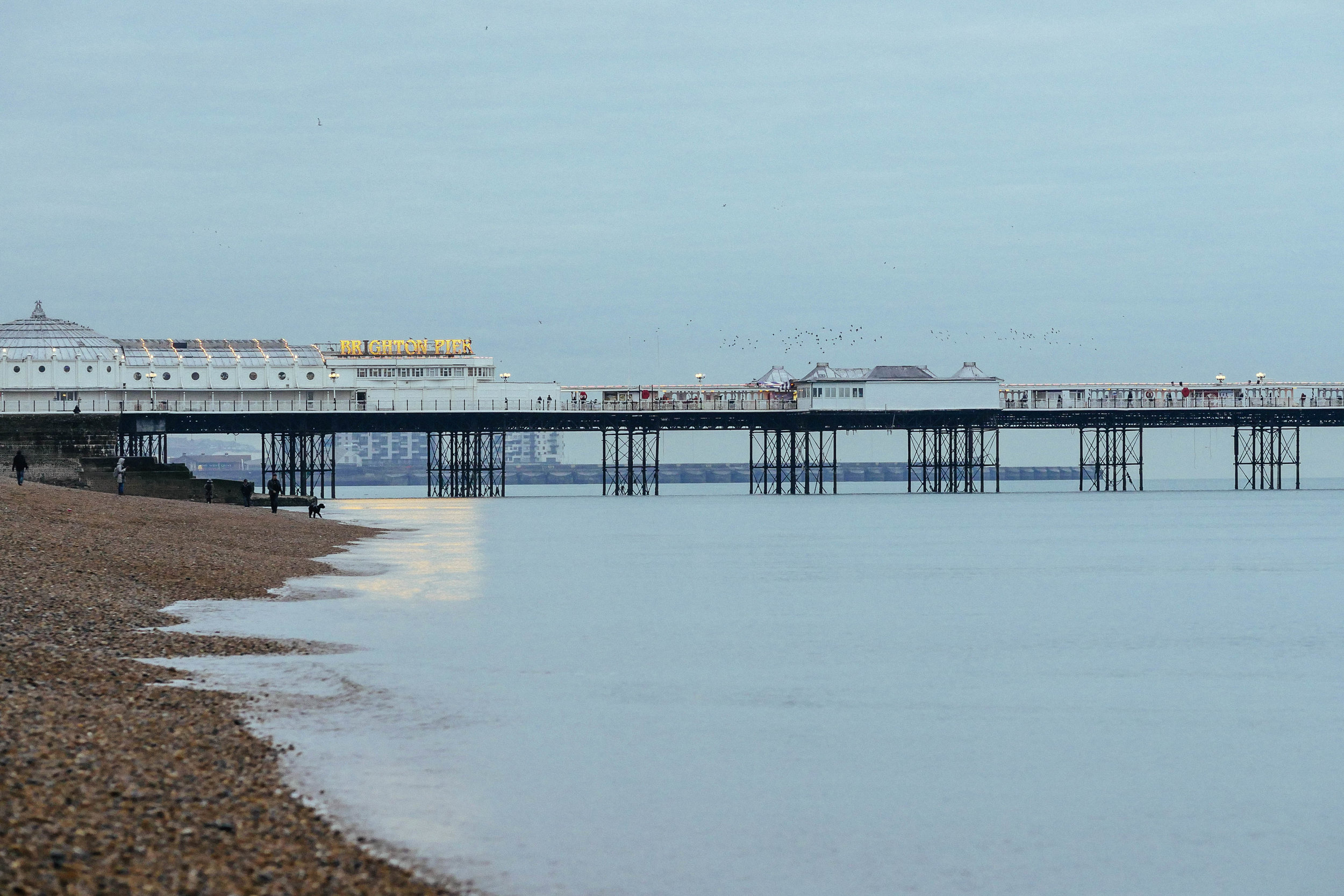 Dusk light on the Brighton Pier