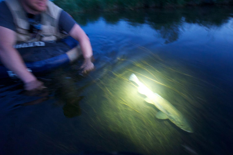 A headlamp release. Silver Creek, Idaho.