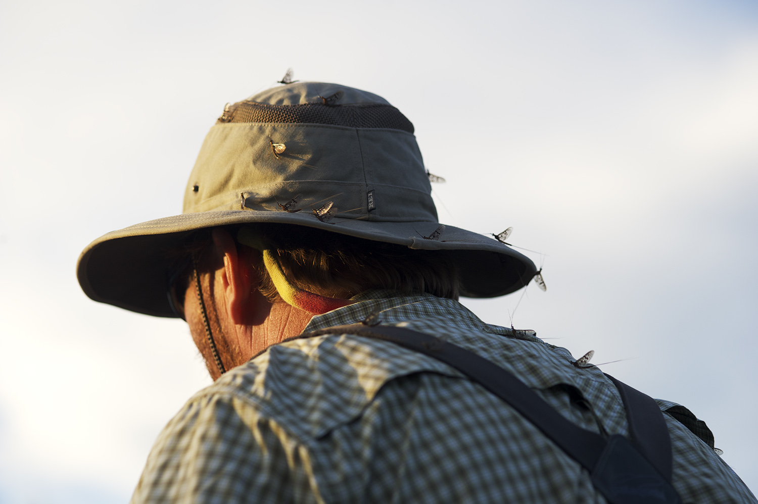 Guide hat and Drakes.