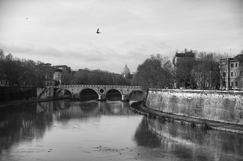 Tiber River & Vatican