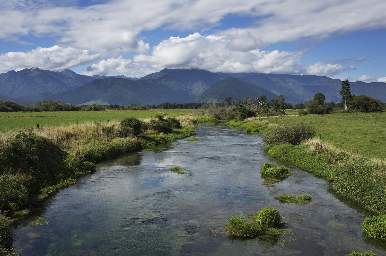 A West Coast Spring Creek