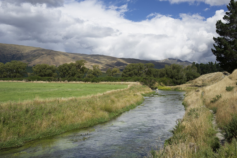 NZ CP Casting Spring Cr Pulled Back.jpg