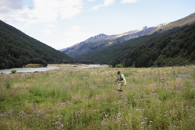NZ CP Walking Mtns Thistle.jpg