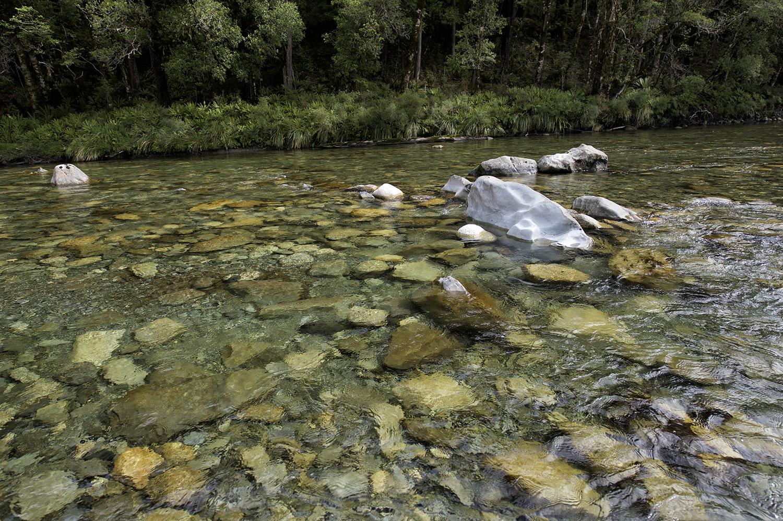 NZ River Clear Water Rocks Trees.jpg