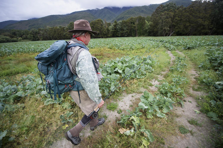 NZ Scott Walking Turnips.jpg