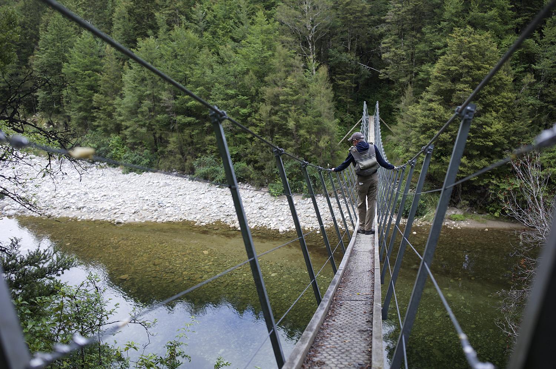 NZ Foot Bridge.jpg