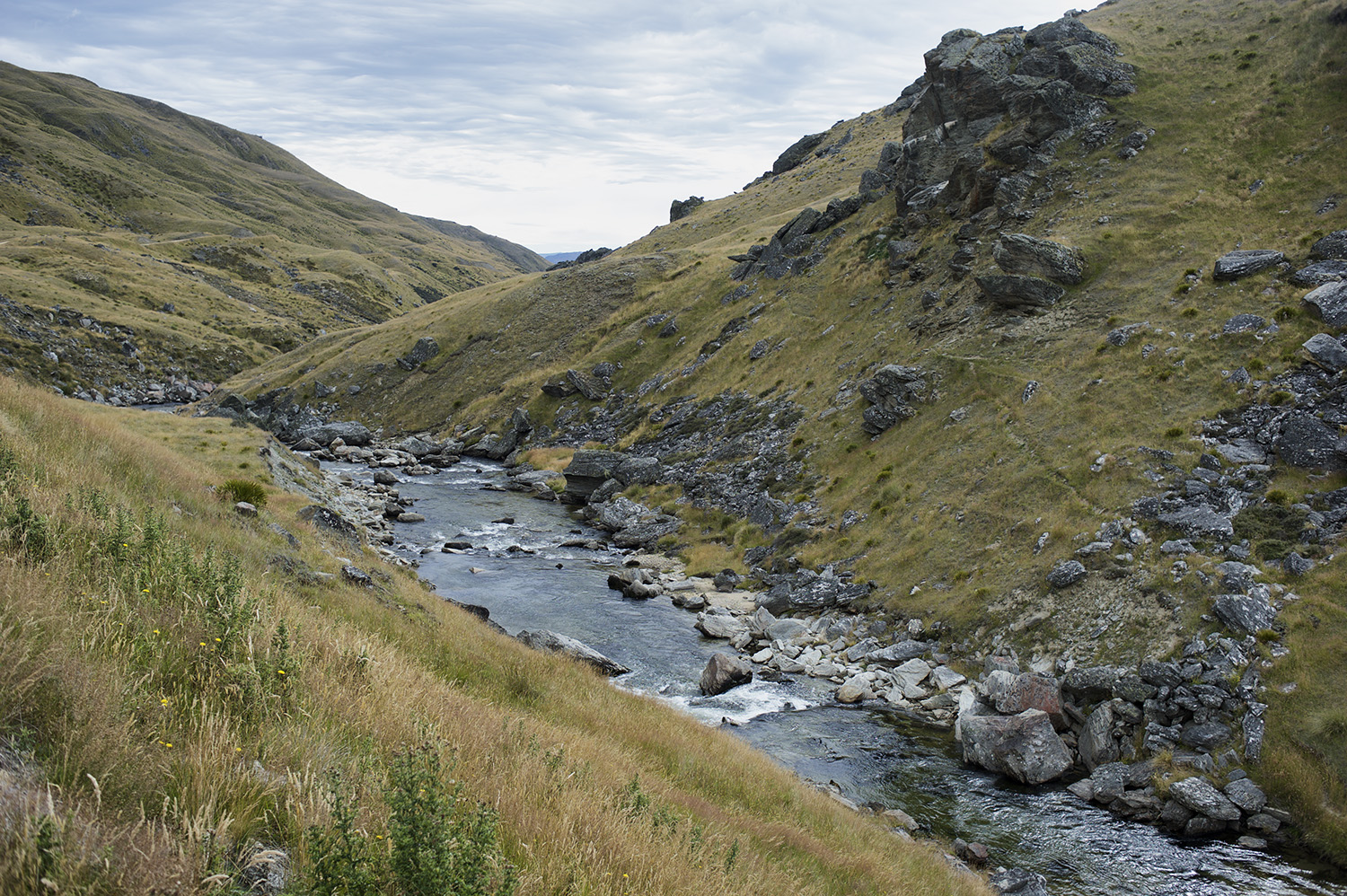 A South Island Backcountry River