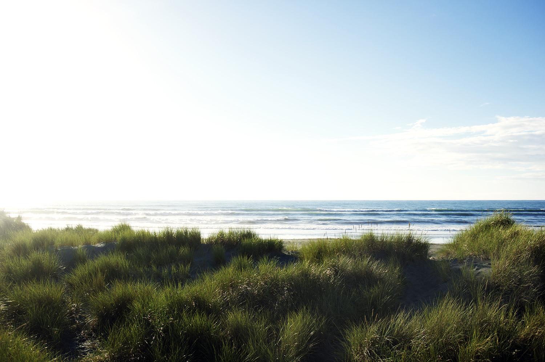 Tasman Sea. South Island