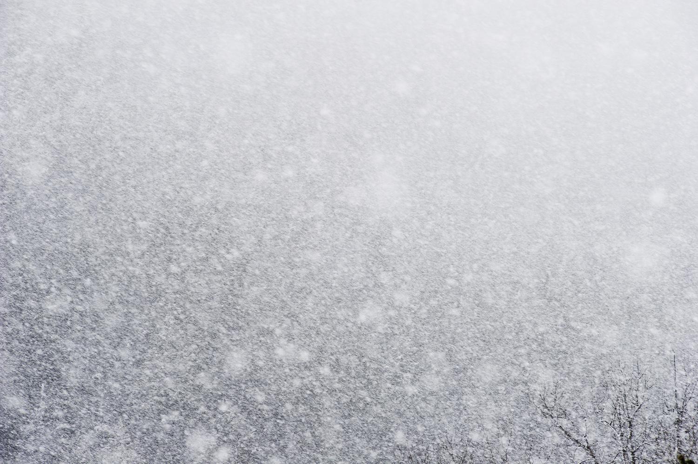 Late Winter Storm. Idaho