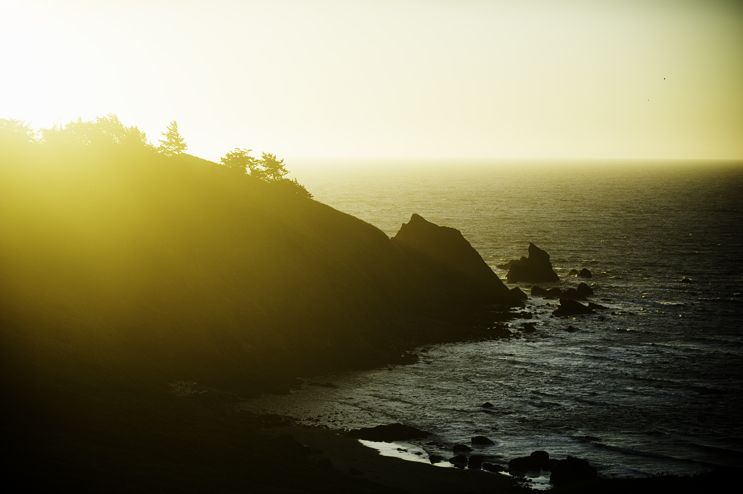 oregon coast backlit.jpg