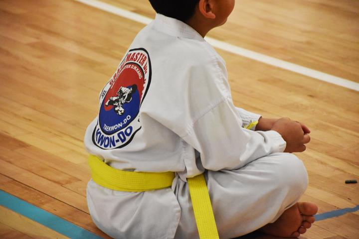 Kang taetwondo, taekwondo, karate, springdale, arkansas, fayetteville,