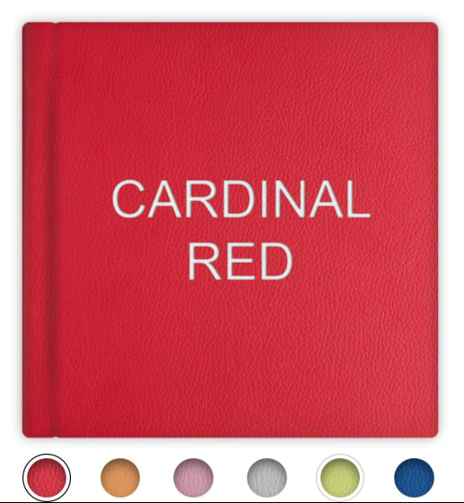 Leatherette Bright Color Cover Options