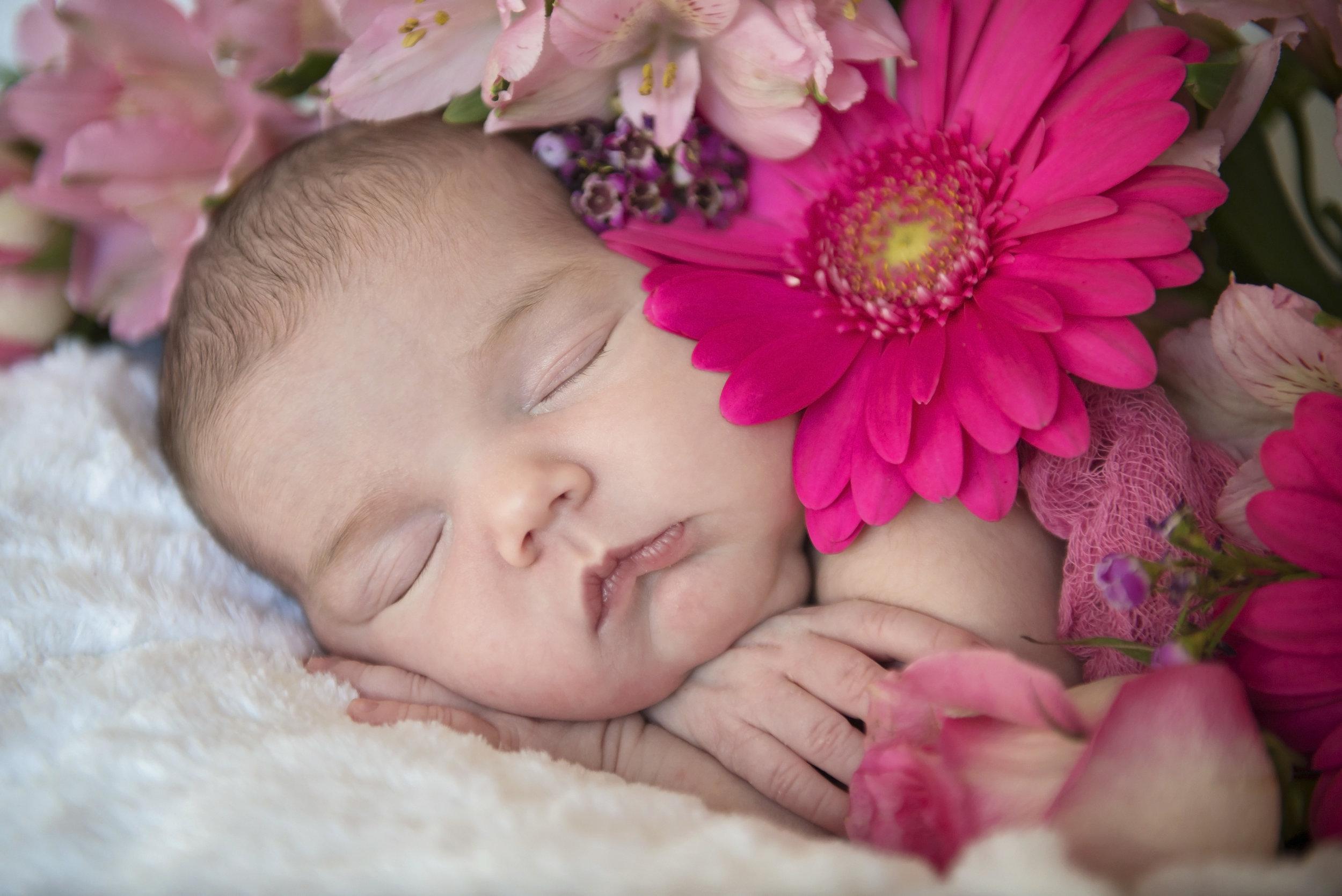 Noelle's Newborn Session - 10.jpg