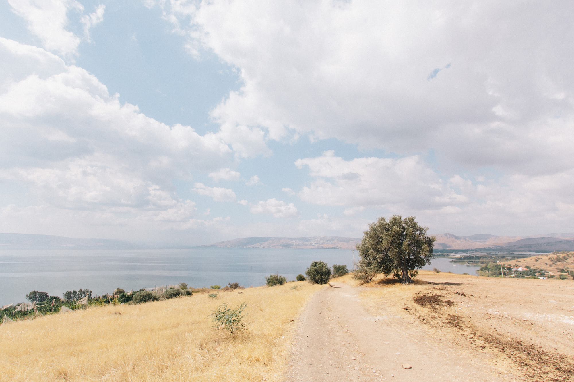 Galilee & the Dead Sea - On day 3/4 we drove down to Lake Galilee & then the Dead Sea to experience some of the incredible beauty the area has to offer, but also to visit some amazing historical places that are mentioned throughout the Bible