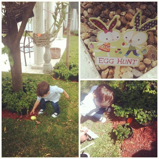 Egg hunt at home.
