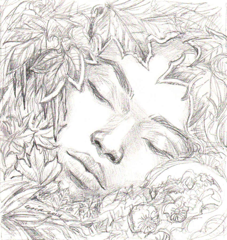 hibernation1_drawingfin.jpg