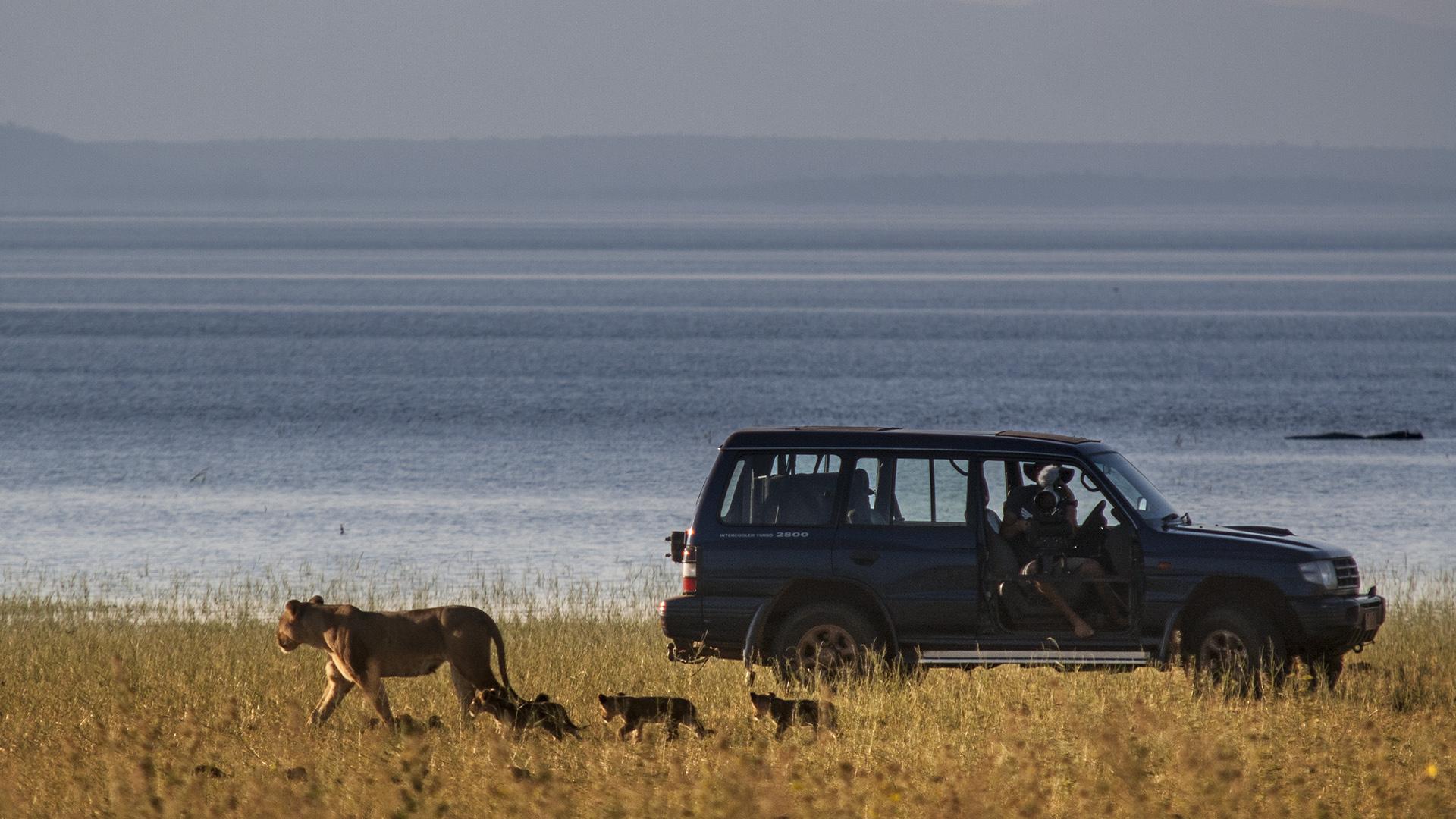 Filming vehicle along Kariba lakeshore - Photo by Rae Kokeš