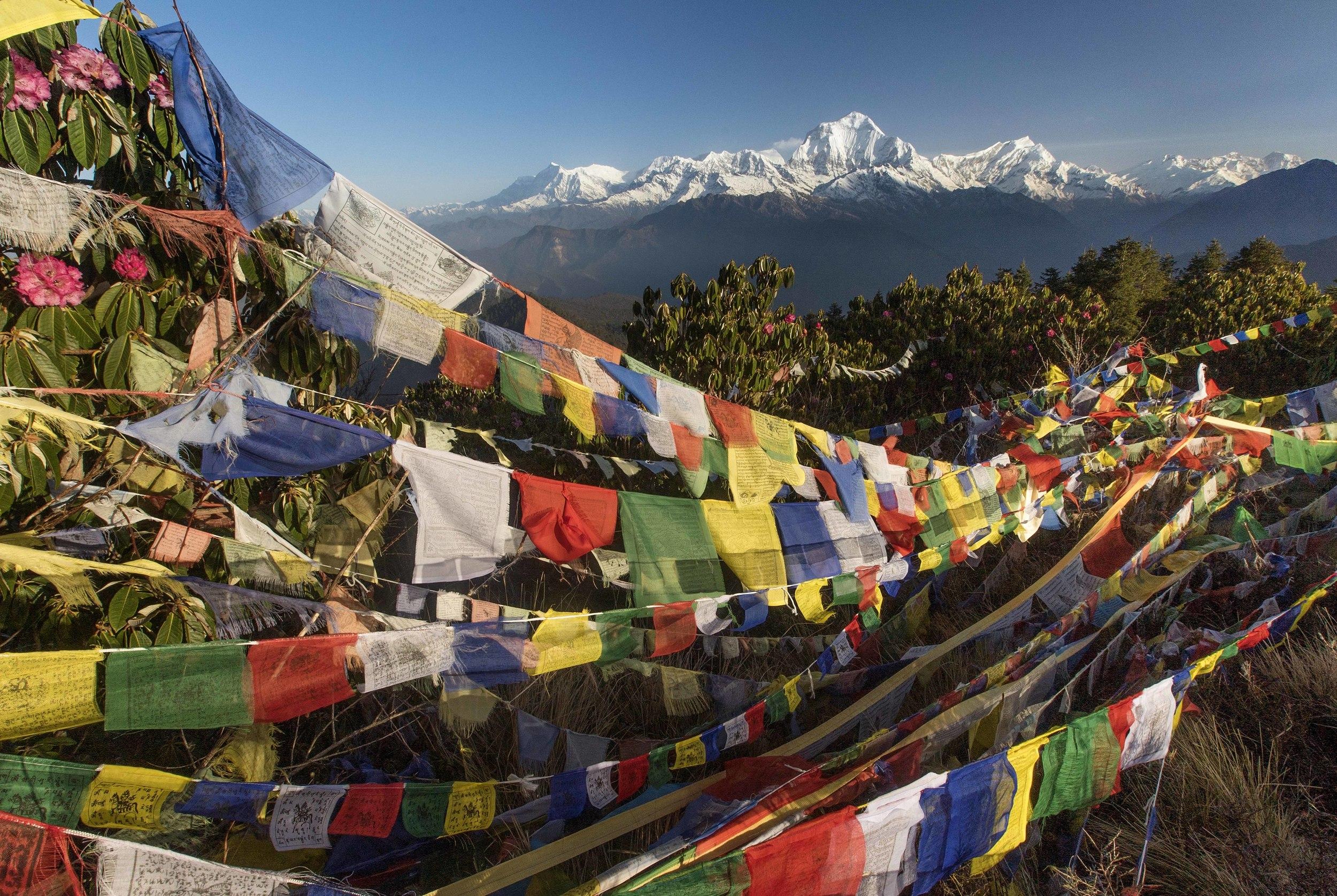 MHood_2015_04_06_AnnapurnaTrek_DSC01734_1.jpg