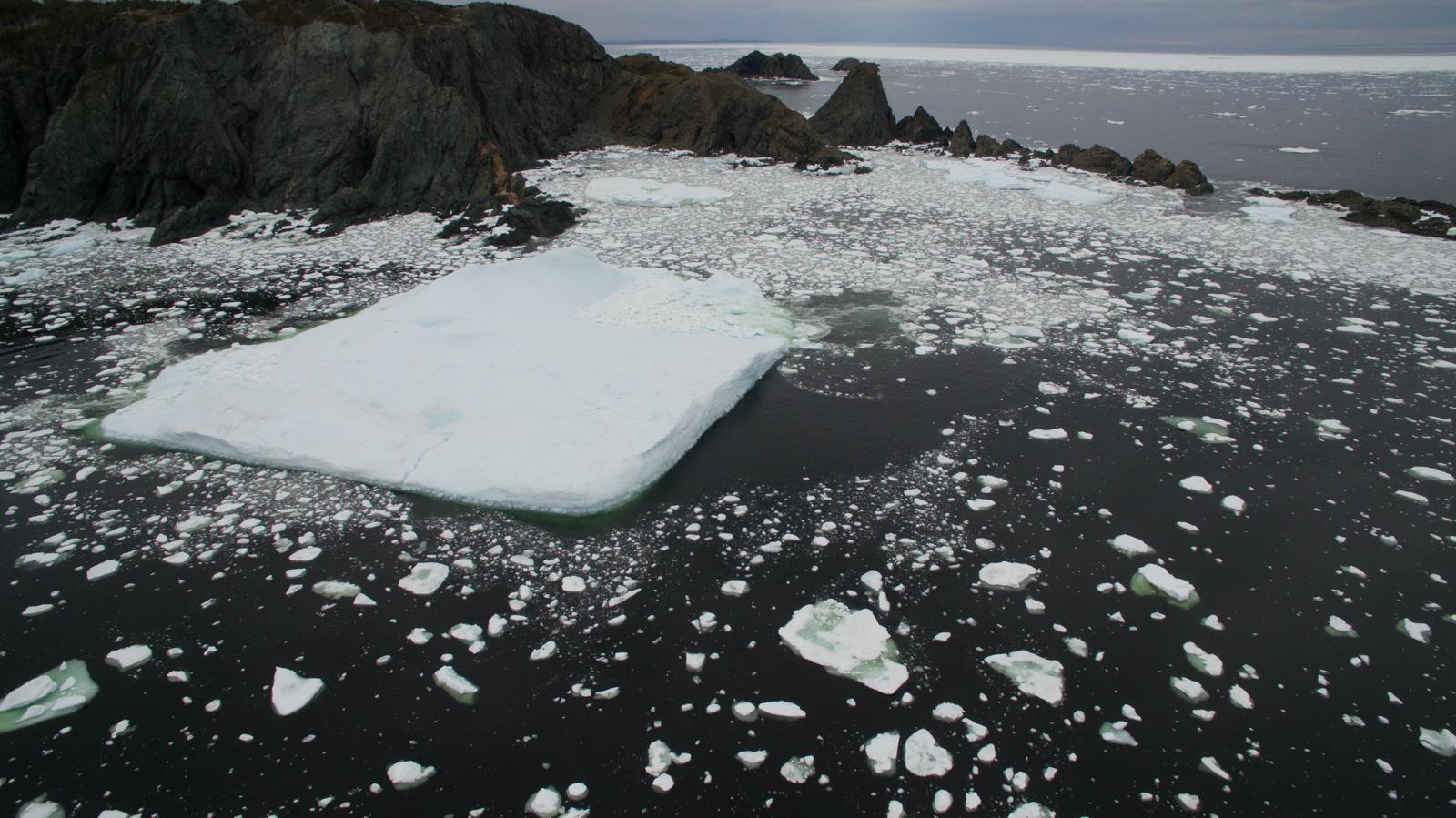 2017.06.17.NFLD.Twilingate_Icebergs.DJI.Photos_0013.jpg