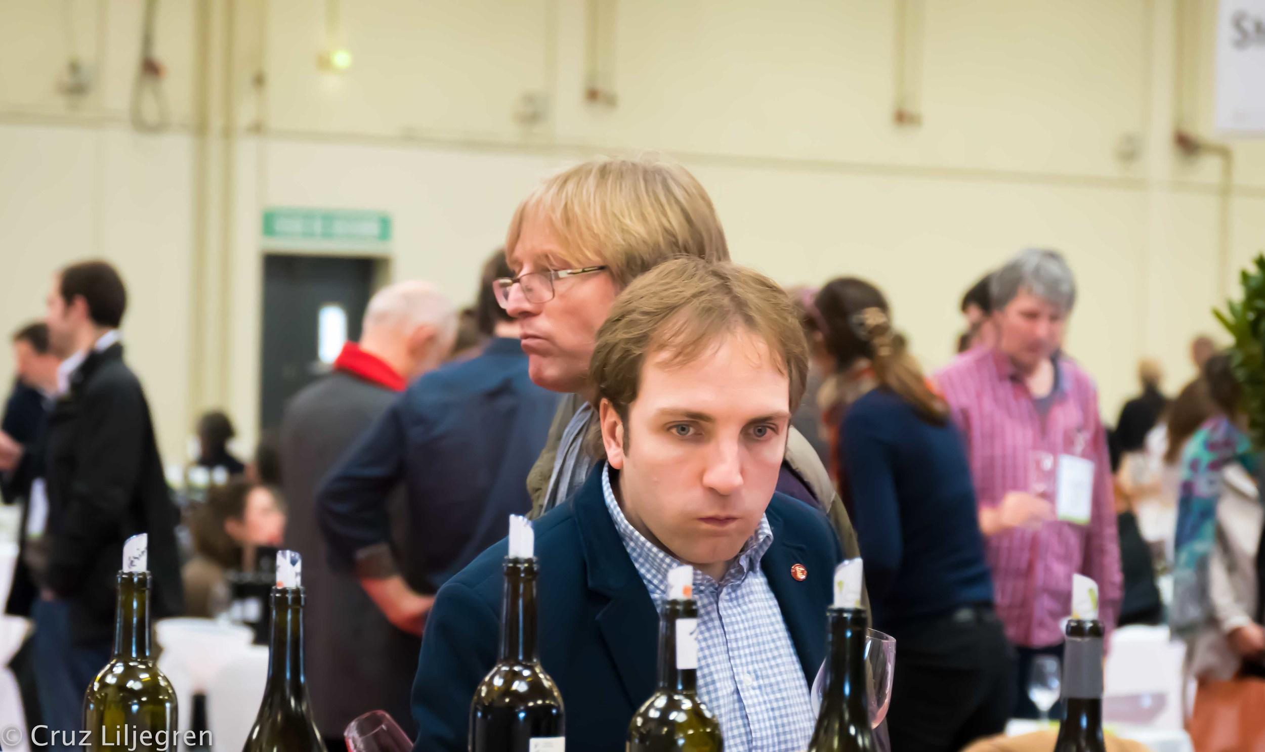 dutch-wine-importer.jpg