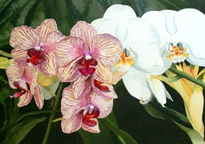 $925.00   8 x 12 Original Watercolor