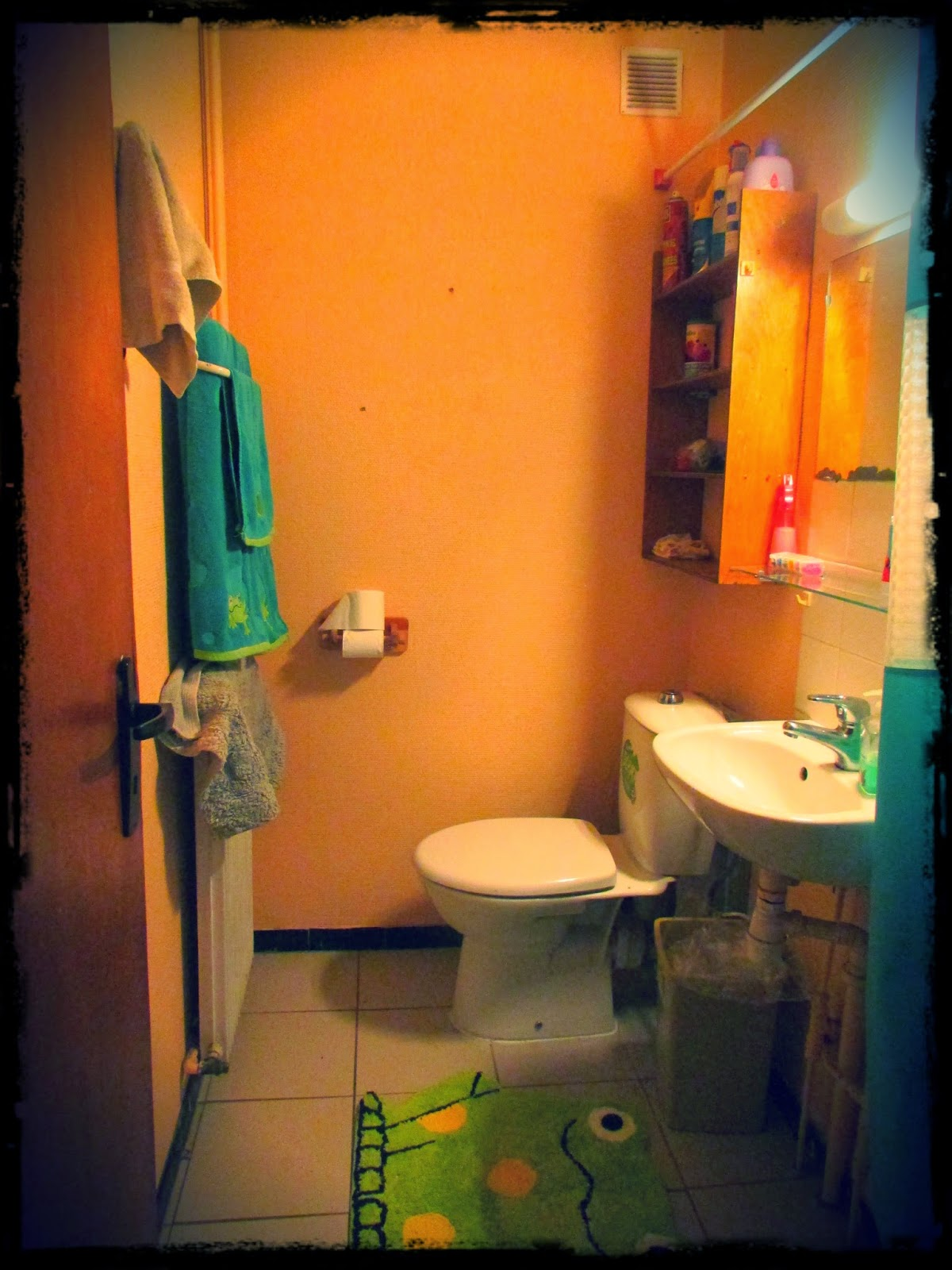 Our only 3 piece bathroom.We have two bathrooms with a shower and a sink and one with just a toilet.Very interesting, France. Very interesting