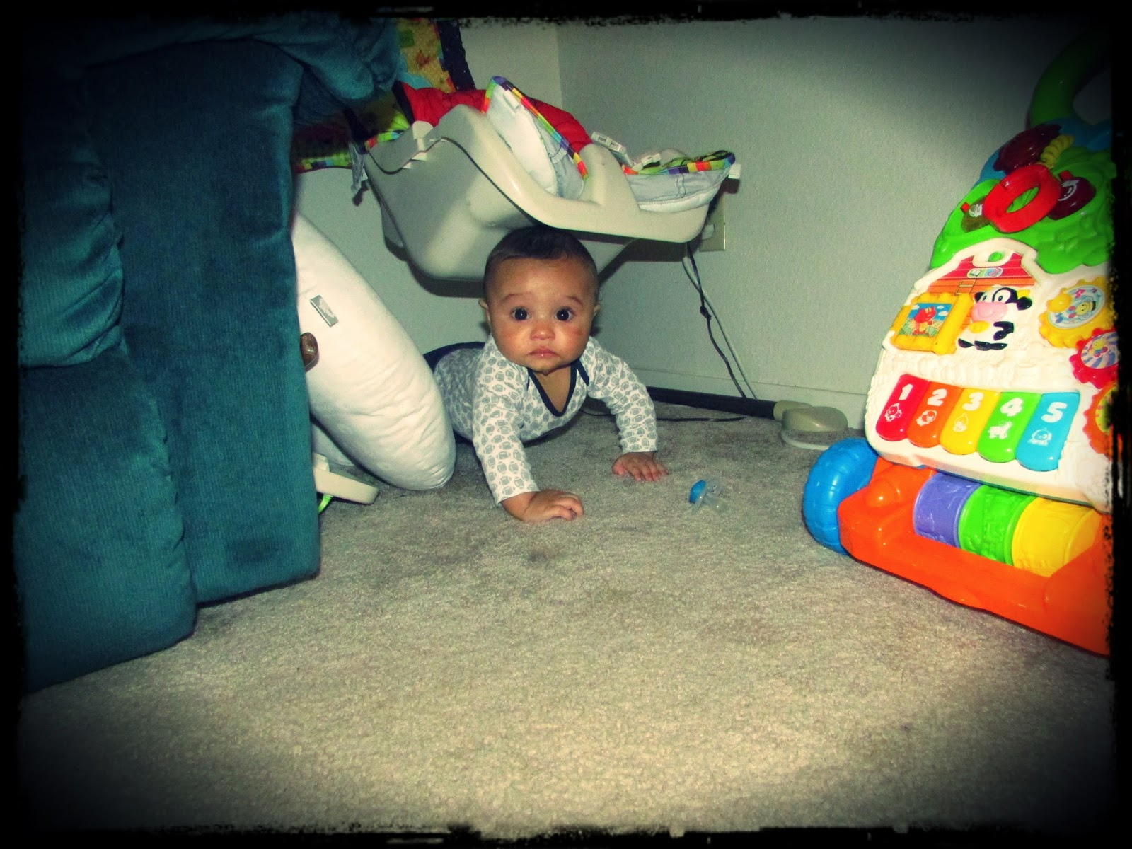 Crawled himself right into the corner!