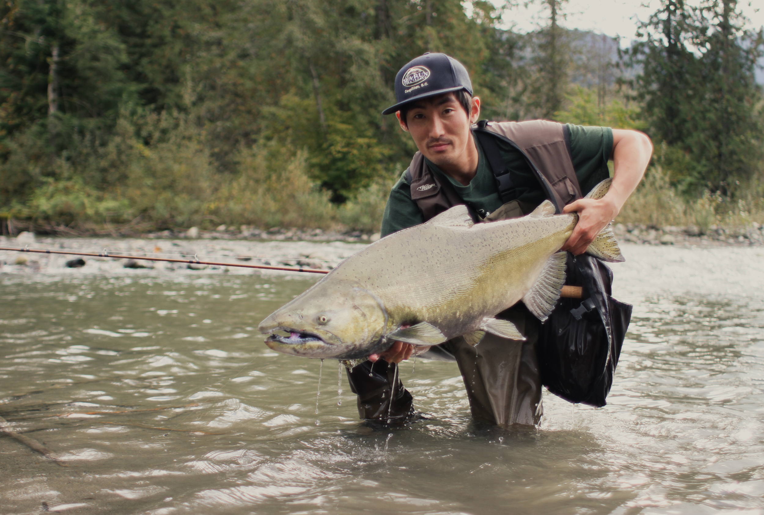Jack Yoo with a massive Chinook Salmon Chilliwack River