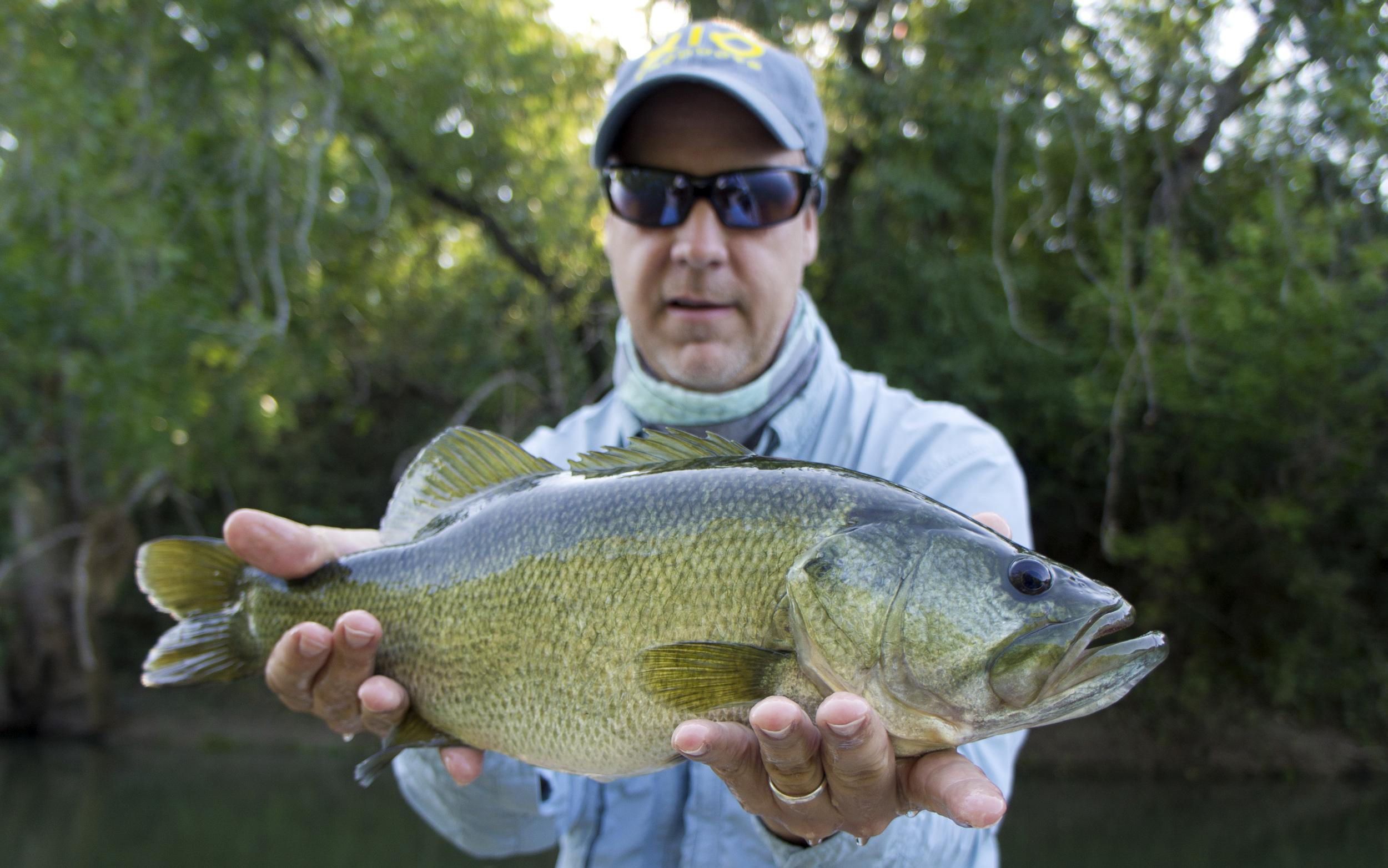Jeff Davis with a big Colorado River bass.
