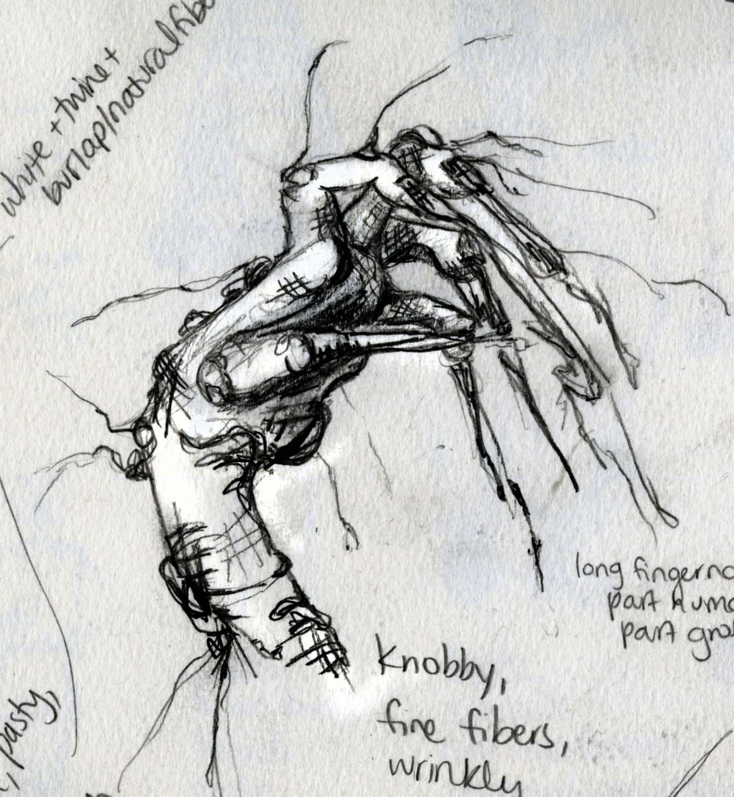 Baobab Hands Sketch
