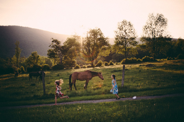 Horse and kids in field