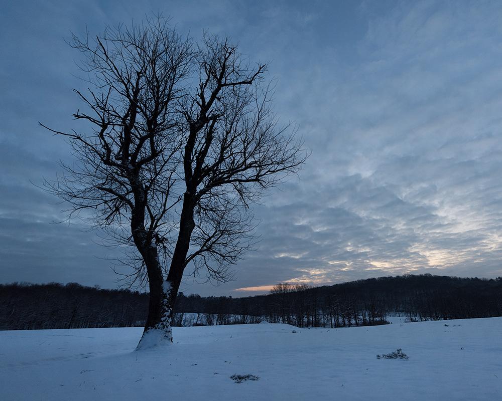 2019-03 Hartwood  Acres Snow (38) FIX.jpg