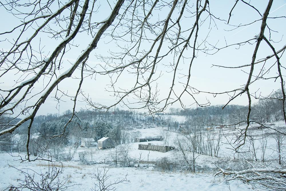 2019-03 Hartwood  Acres Snow (136) FIX.jpg