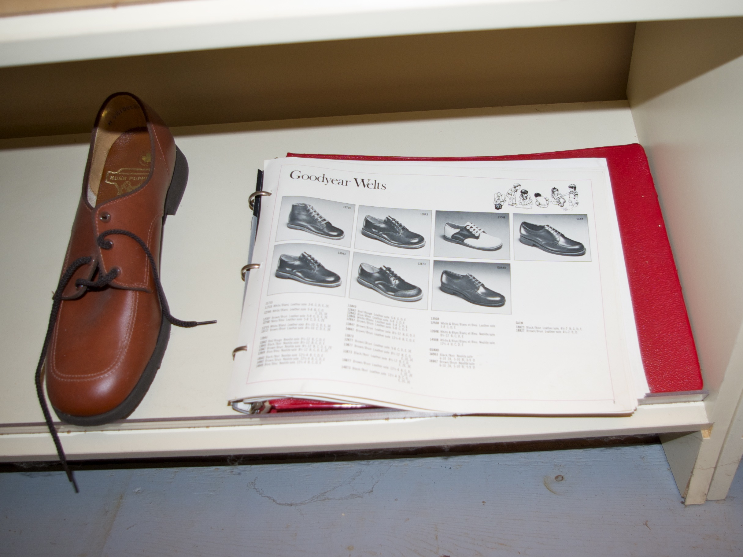 The shoe salesmen came with catalogues.
