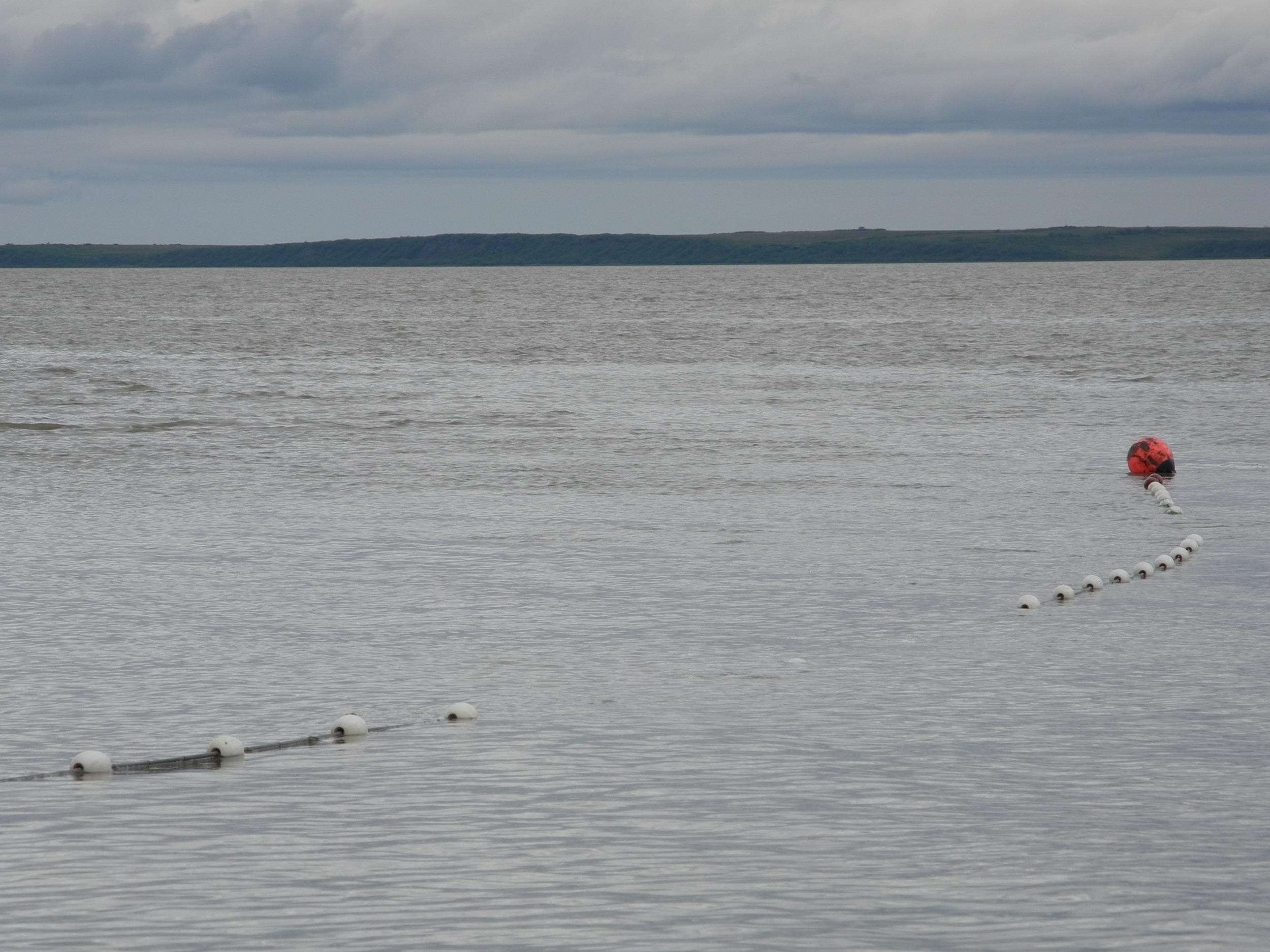Drift net in the waters of Bristol Bay, AK.
