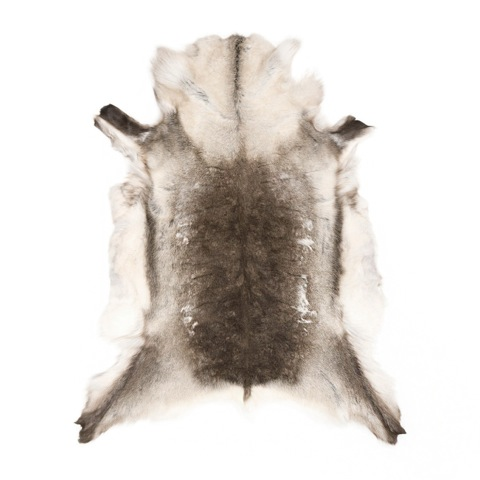Reindeer Skin Rug : sustainably sourced from the Sami people in Scandinavia