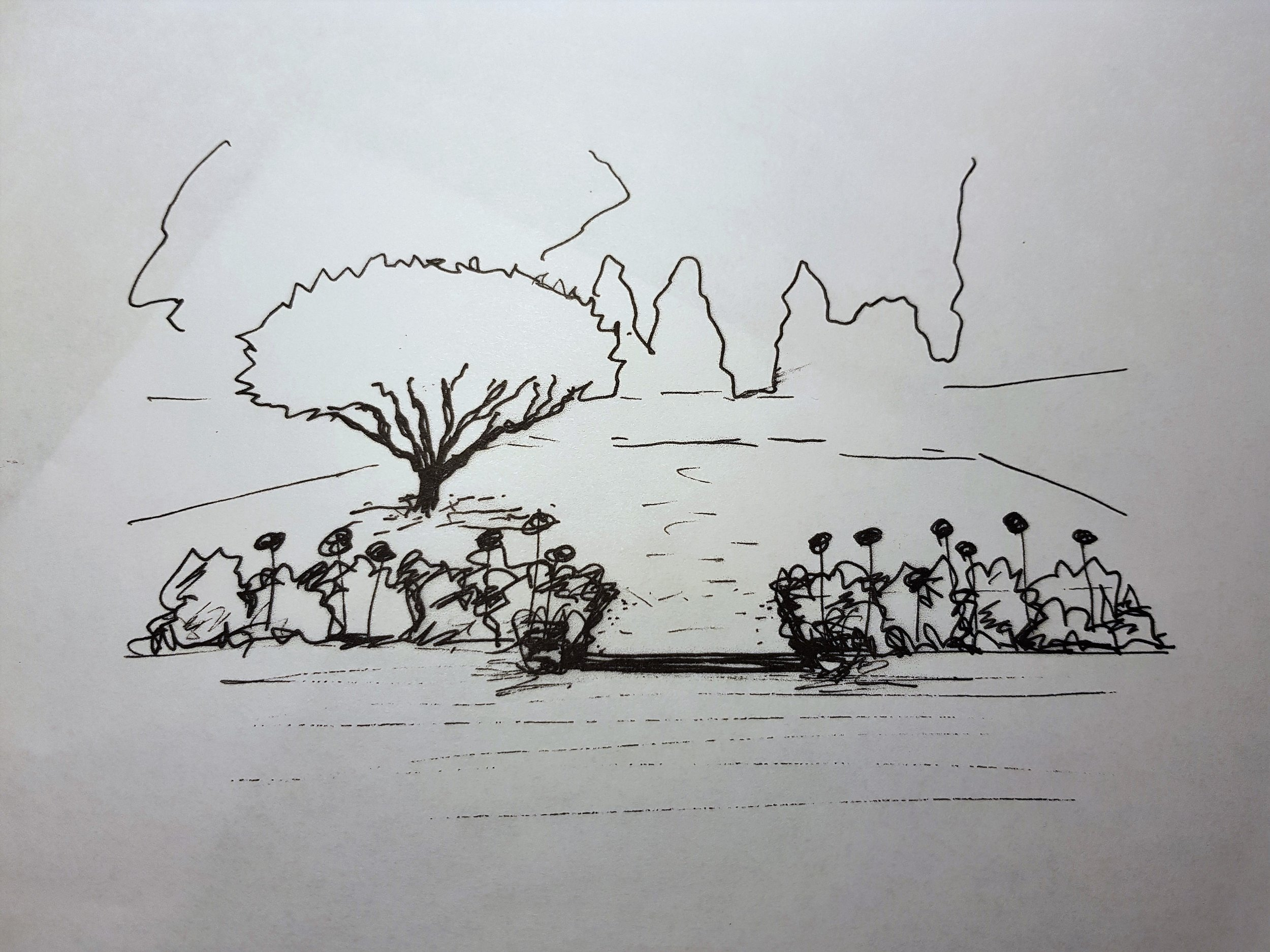 A sketch of the proposed beds and the Magnolia tree