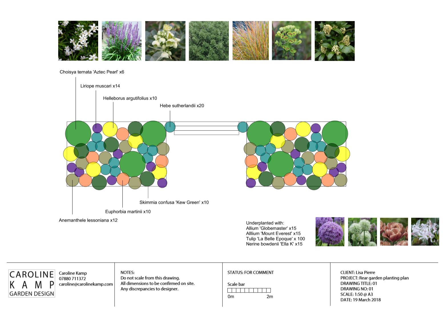 The final planting plan with full list of plants and their placement. I produce these designs to scale using Vectorworks software.