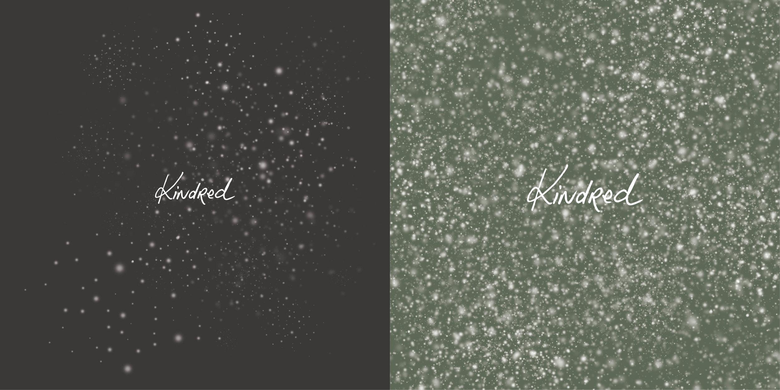 Kindred_Brand_Identity6.jpg