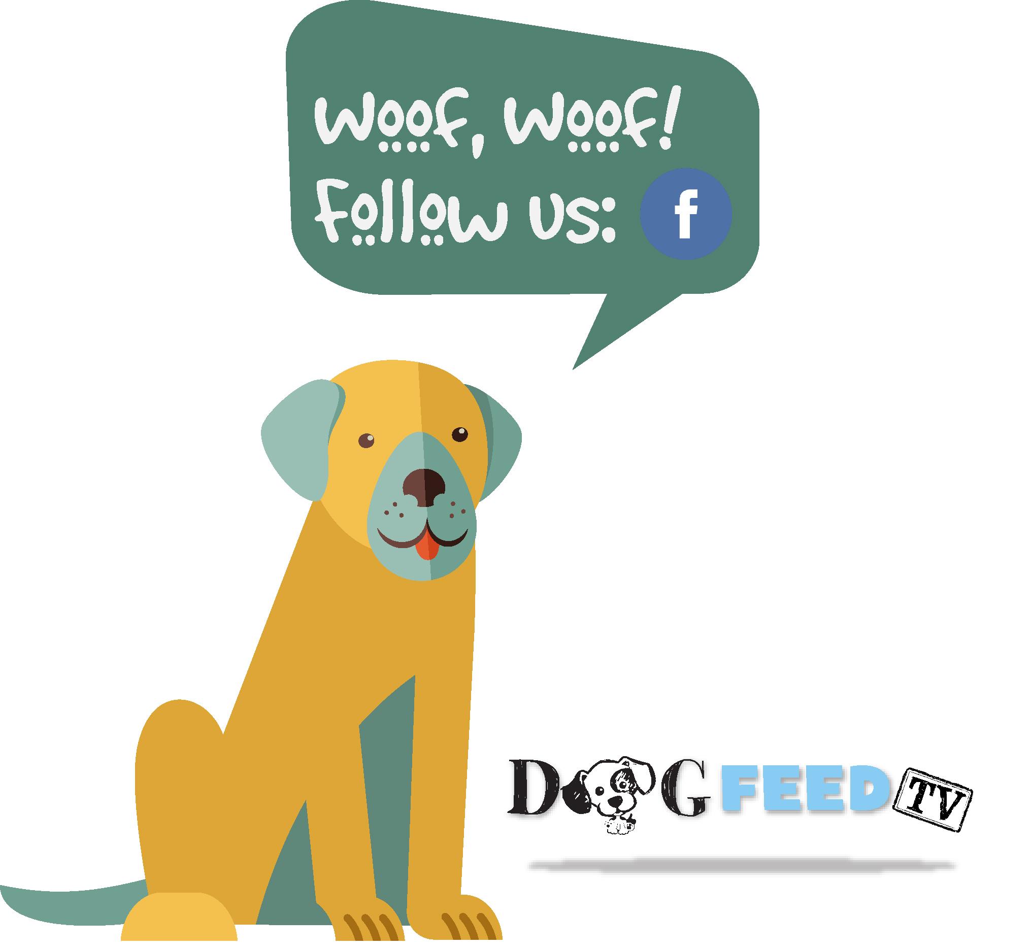 dog feed follow_facebook.jpg