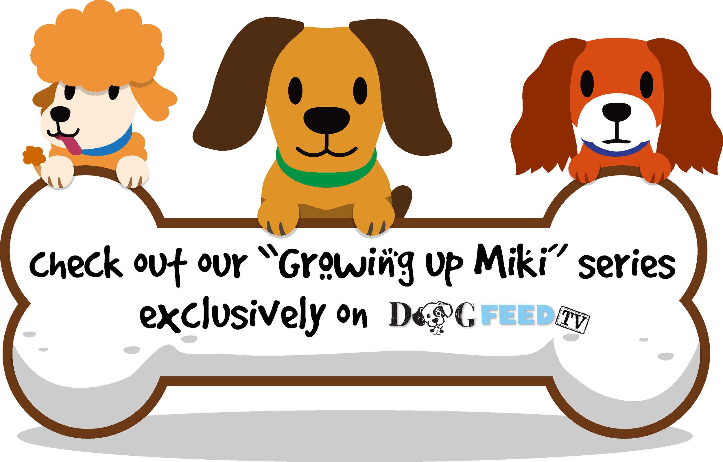 miki series icon.jpg