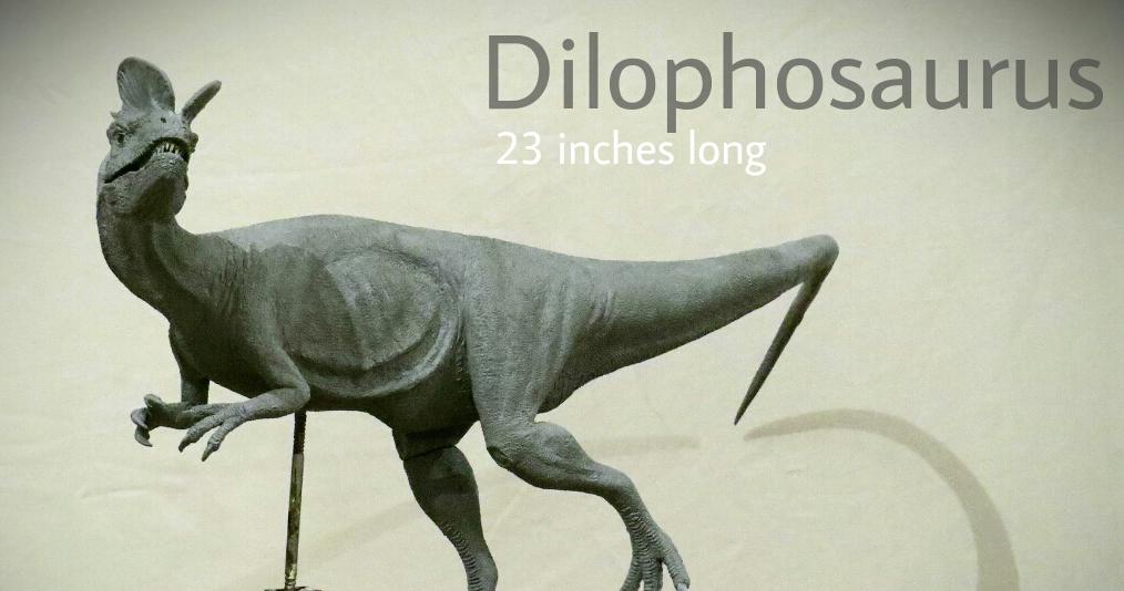 Galileo Hernandez - Dilophosaurus