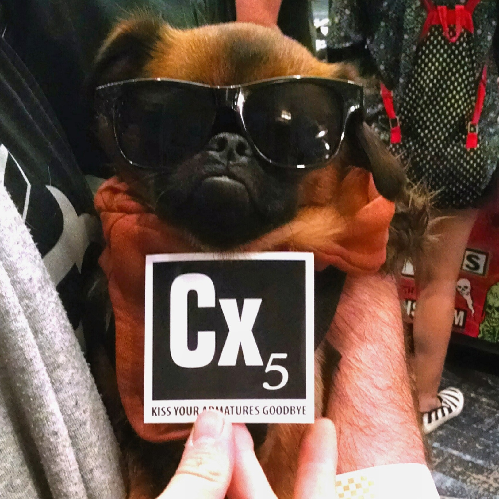 Chamaco really digs Cx5