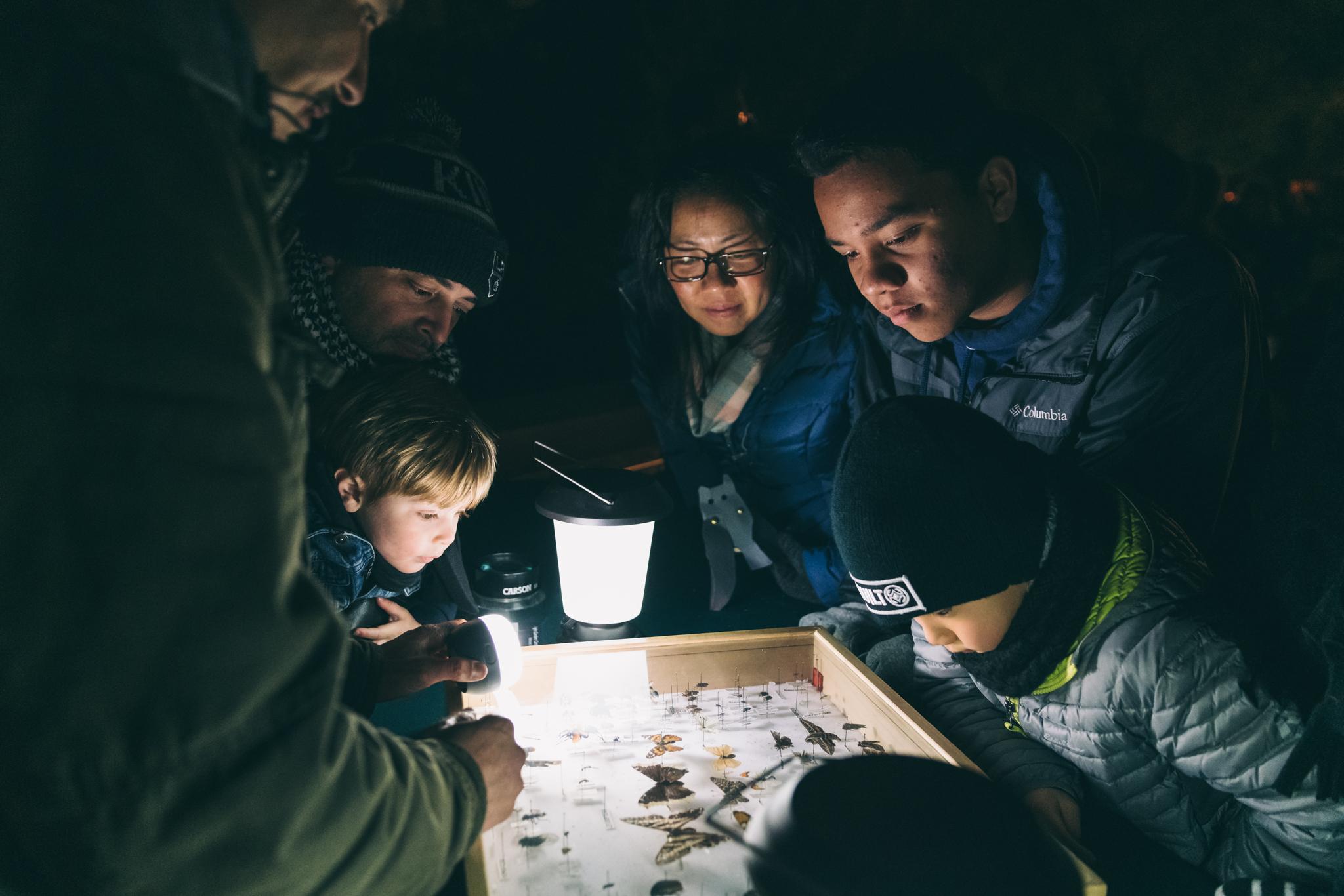 Descanso Night Garden Campfire Stories - 110.jpg